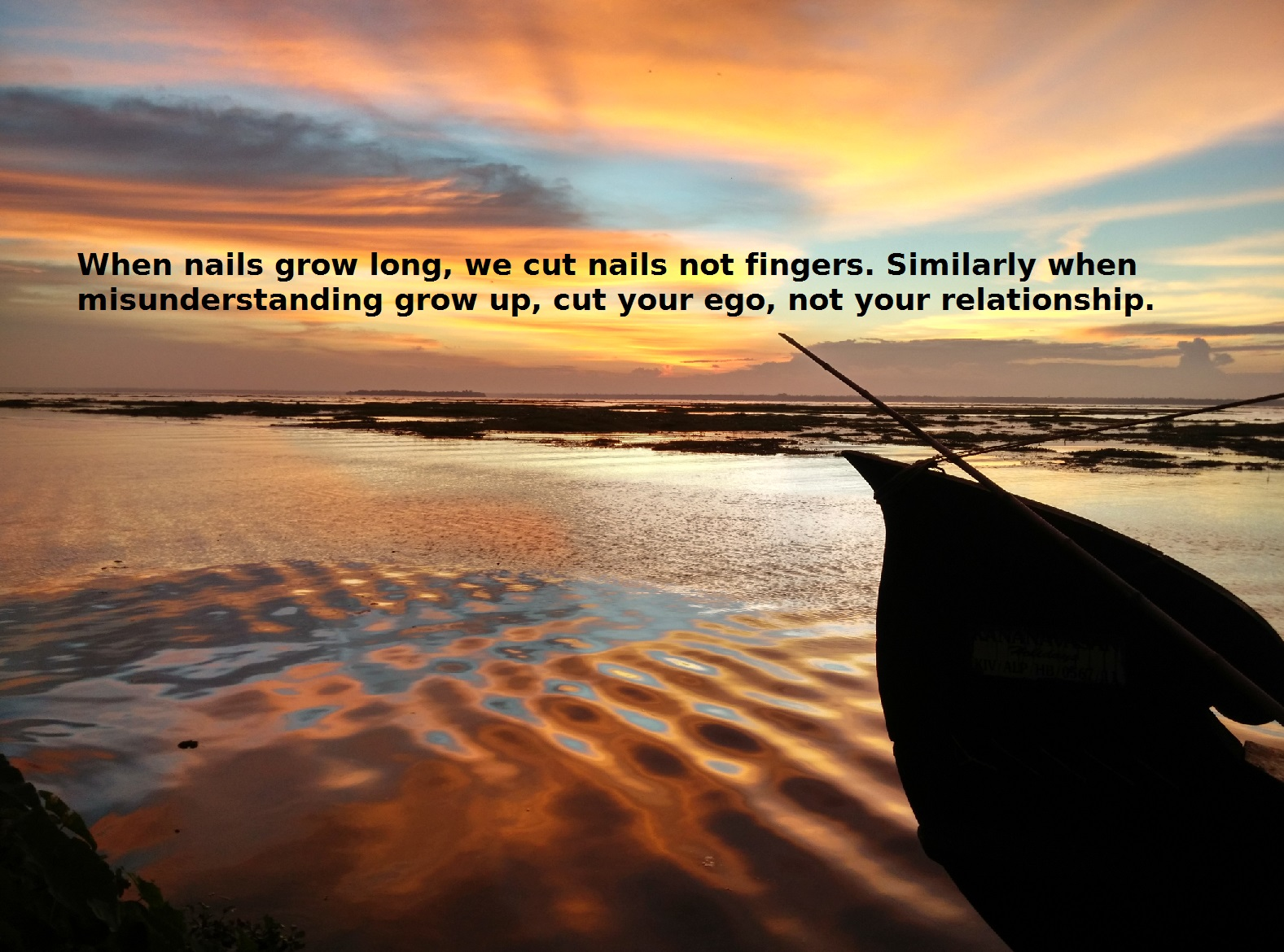 When nails grow long, we cut nails not fingers. Similarly when misunderstanding grow up, cut your ego, not your relationship.